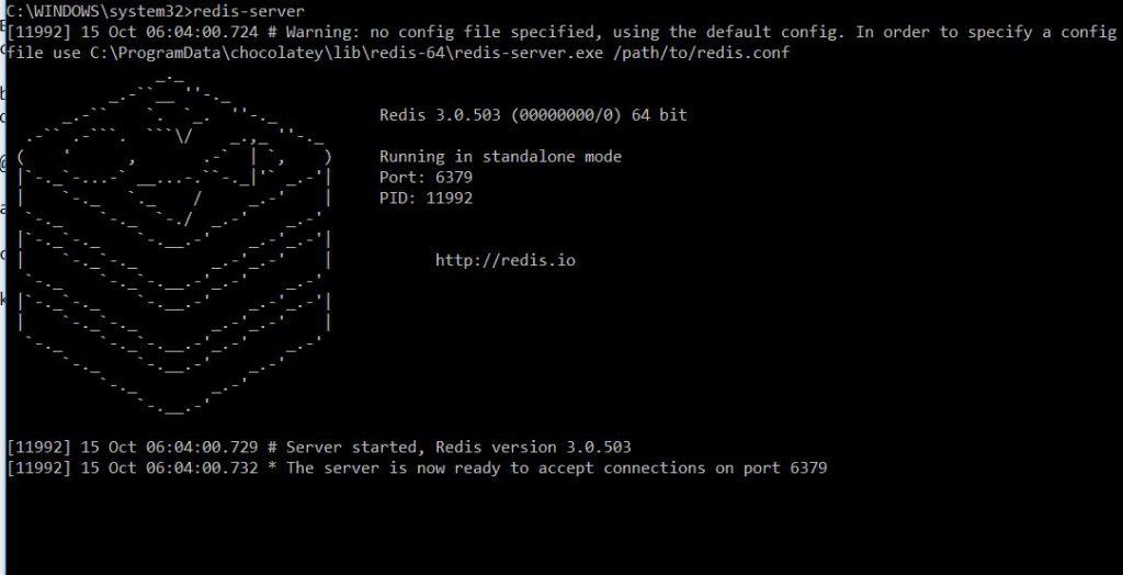 redis-server