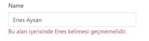 Validation Error Message